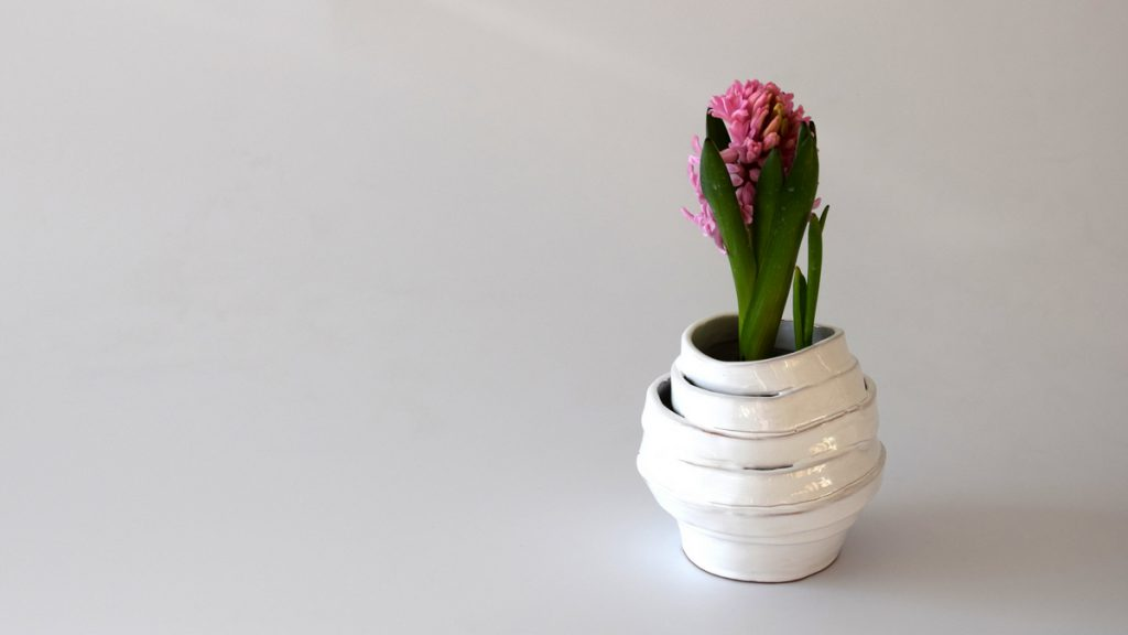 naomipeli-ceramics-spring-collection_6-w